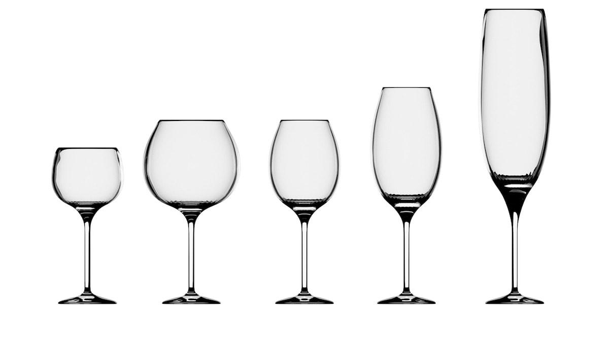 Basic Anatomy of a Wine Glass
